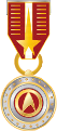 Medal-of-valor-1-.png