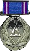 DSmedal-1--1-.png