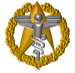 Command Badge of Starfleet Surgeon General: CONFERMED AS SURGEON GENERAL OF STARFLEET ON STARDATE 241909.09, ADMIRAL SABINE SCHOLTZ ARCHER